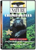 Nature - Chimpanzees