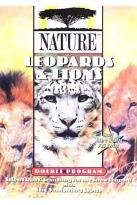 Nature - Leopards and Lions