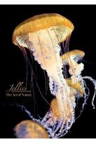 Art Of Nature: Jellies
