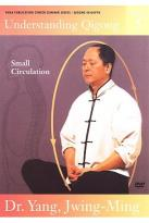 Understanding Qigong - DVD 5: Small Circulation