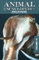 Animal Encyclopedia, Vol. 10: Deep Sea Magicians and Water Planet