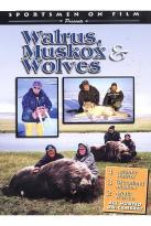 Sportsmen On Film - Walrus, Muskox And Wolves