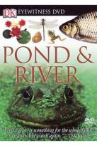 Eyewitness - Pond & River