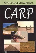 Fly Fishing Adventure: Carp