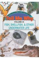 Fish Shellfish and Other Underwater Life
