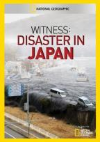 Witness: Disaster in Japan