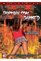 Bachelor Party In Bungalow Of The Damned
