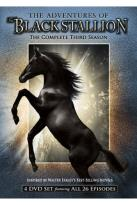 Adventures of the Black Stallion - The Complete Third Season