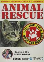 Animal Rescue Vol. 2 - Best Cat Rescue