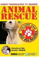 Animal Rescue Vol. 1 - Best Dog Rescues