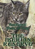 Iberian Reserve: Nocturnal Birds of Prey