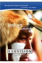 Esovision Relaxation: Indian Summers