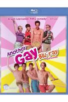 Another Gay Movie/Another Gay Sequel: Gays Gone Wild