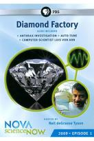 NOVA: scienceNOW: 2009 Episode 1 - Diamond Factory