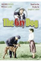 Gay Dog