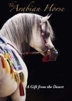 Arabian Horse: A Gift from the Desert