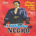 Tulipan Negro