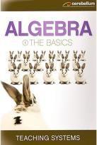 Teaching Systems: Algebra Module 1 - The Basics