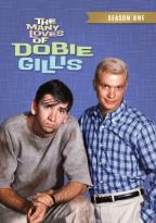 Many Loves of Dobie Gillis: Season One