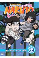Naruto - Vol. 29: Losing is not an Option