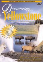 Discovering Yellowstone