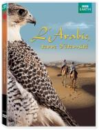 L'Arabie Terre d'Eternite