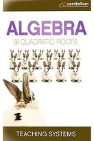 Teaching Systems - Algebra Module 5: Quadratic Root
