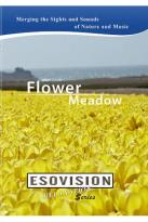 Esovision Relaxation: Flower Meadow