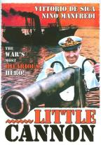 Little Cannon