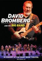 David Bromberg and His Big Band: In Concert at the Count Basie Theatre, Red Bank, NJ