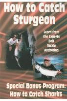 How to Catch Sharks/How to Catch Sturgeon
