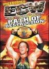 Ecw - Path Of Destruction