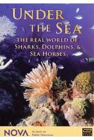 Nova - Under the Sea: The Real World of Sharks, Dolphins, and Seahorses