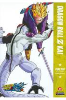 Dragonball Z Kai - First Season: Part Five