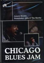 Lonnie Brooks/Studebaker John & The Hawks - Chicago Blues Jam