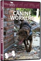Extraordinary Dogs: Canine Workers