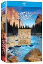 Scenic National Parks Collection