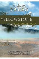 Nature Parks - Yellowstone National Park Wyoming