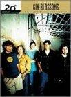 20th Century Masters - The Best Of The Gin Blossoms