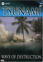 Tsunami: Wave of Destruction