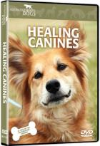 Extraordinary Dogs: Healing Canines