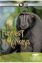 Nature: The Funkiest Monkeys