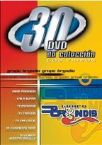 30 DVD Colleccion - Grupo Bryndis