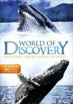 ABC World of Discovery: Blue Whale - Largest Animal on Earth