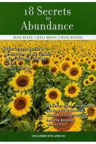 18 Secrets To Abundance - Well-Being, Doing, Having