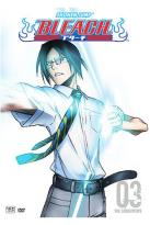 Bleach - Vol. 3