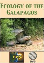 Ecology of the Galapagos