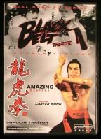Black Belt Theatre Double Feature - Amazing Masters/Shaolin Traitor