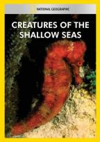 Creatures of the Shallow Seas