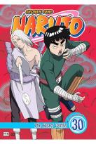 Naruto - Vol. 30: The Beast Within